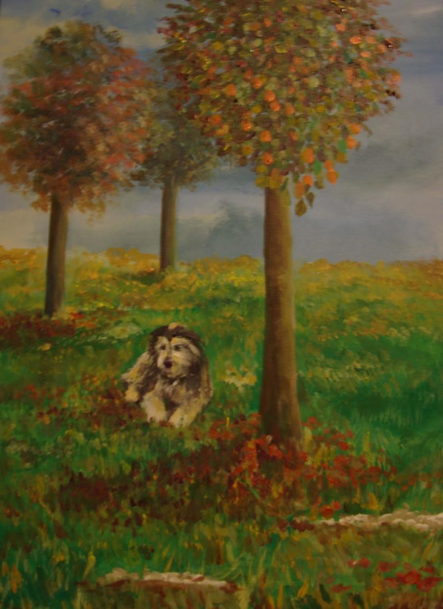 pucci all'ombra dell'autunno